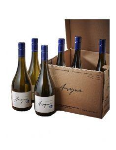 Caja Mix 6 vinos, Amayna, Viña Garces Silva, Valle de San Antonio