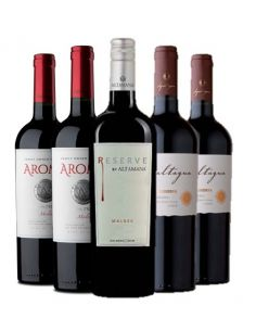Pack mix 6 Malbec Valle del...