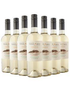 12 vinos Sauvigon Blanc...
