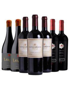 Pack 12 vinos Premium...
