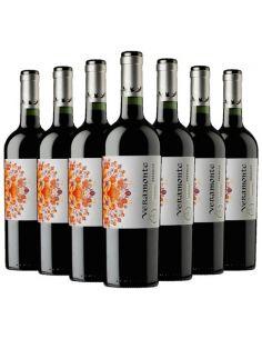 Pack 12 vinos Carmenere, Reserva, Viña Veramonte