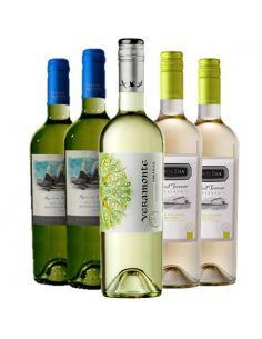 Pack Sauvignon Blanc, Veramonte, Santa Ema, Puente Austral