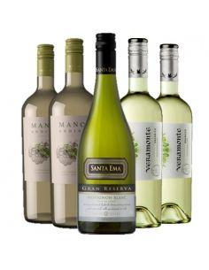 Pack 6 vinos Sauvignon Blanc Manos Andinas,Santa Ema,Veramonte