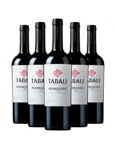 6 vinos Tabali Pedregoso, Syrah , Gran Reserva Viña Tabali