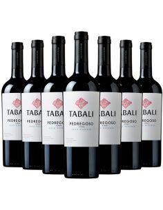 12 botellas Tabali Pedregoso, Syrah , Gran Reserva Viña Tabali