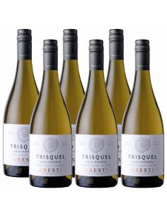 Pack 6 Sauvignon Blanc, Gran Reserva, Trisquel