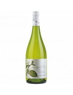 Sauvignon Blanc, Botanic Series, La Cantera, Viña Casas del Bosque