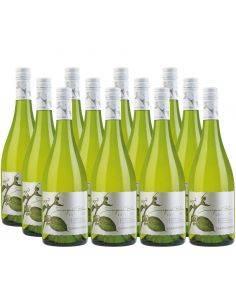 Pack 12 Vinos Sauvignon Blanc , La Cantera, Viña Casas del Bosque