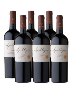 Pack 6 vinos Malbec, Reserva, Viña Apaltagua