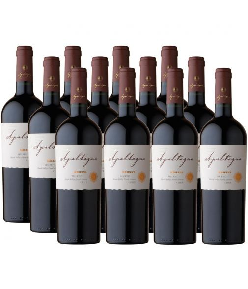 Pack 12 vinos Malbec, Reserva, Viña Apaltagua