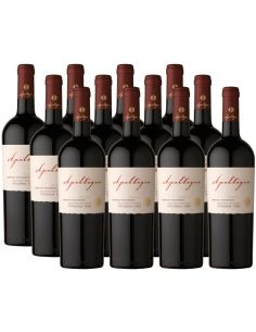 Pack 12 vinos Cabernet Sauvignon, Reserva, Viña Apaltagua