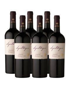 Pack 6 vinos Carmenere, Reserva, Viña Apaltagua