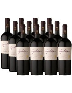 Pack 12 vinos Carmenere, Reserva, Viña Apaltagua
