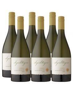 Pack 6 vinos Pinot Gris, Reserva, Viña Apaltagua