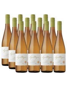 Pack 12 vinos Riesling, Reserva, Viña Apaltagua