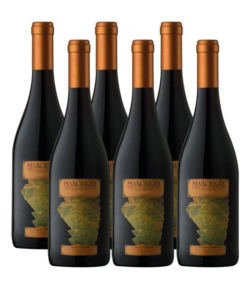 Pack 6 Syrah, Icono, Marchigue Private Collection