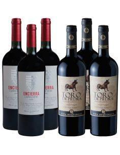 Pack 6 Botellas Toro de Piedra Cabernet Sauvignon y Encierra Carmenere