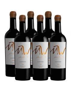 Pack 6 vinos Carmenere, Ícono, MW, Maturana Wines, Valle de Colchagua