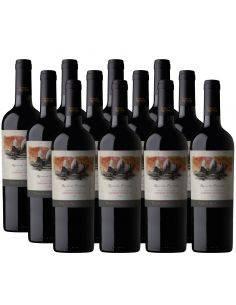 Pack 12 vinos Cabernet Sauvignon, Reserva Privada, Viña Puente Austral, Valle de Colchagua