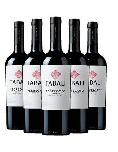 6 vinos Tabali Pedregoso, Carmenere, Gran Reserva Viña Tabali