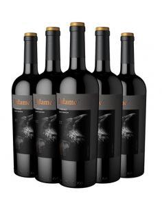 Pack 6 Cabernet Sauvignon, Reserva, Infame, Viña Antagonista