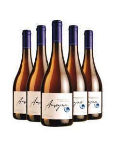 Pack 6 vinos Sauvignon Blanc Barrel Fermented, Viña Garces Silva, Amayna