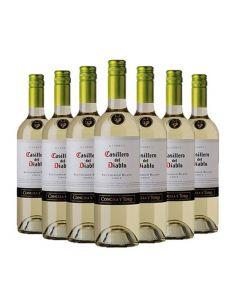 Pack 12 vinos Sauvignon Blanc, Casillero del Diablo, Reserva, Viña Concha y Toro