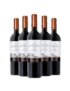 Pack 6 vinos Carmenere, Reserva, Castillo de Molina, Viña San Pedro