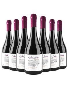 Pack 12 vinos Malbec, Premium, Vista Bella, Viña Riveras del Chillan