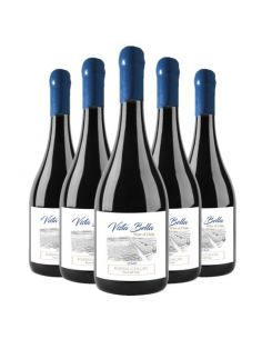 Pack 6 vinos Syrah, Premium, Vista Bella, Viña Riveras del Chillan