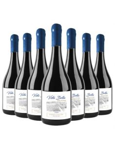 Pack 12 vinos Syrah, Premium, Vista Bella, Viña Riveras del Chillan
