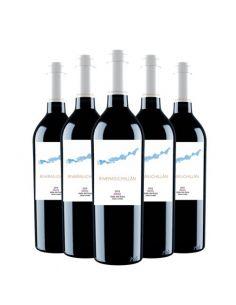 Pack 6 vinos Merlot, Edición Limitada, Viña Riveras del Chillán