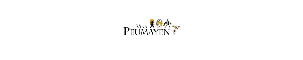 Viña Peumayen